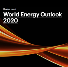 world energy 2020_icon_2